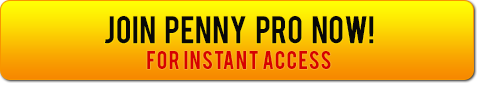 Make Me A Penny Stock PRO!